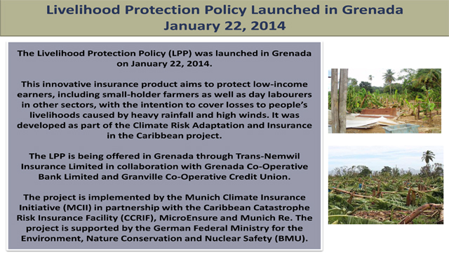 Livelihood Protection Policy Launch Grenada January 2014